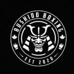 UWOSA Members Save  25% at Bushido Boxing
